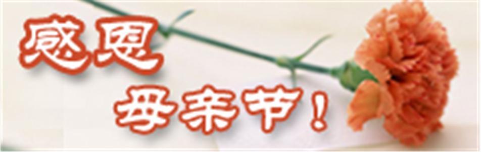 中国祭奠网,感恩母亲节专题!