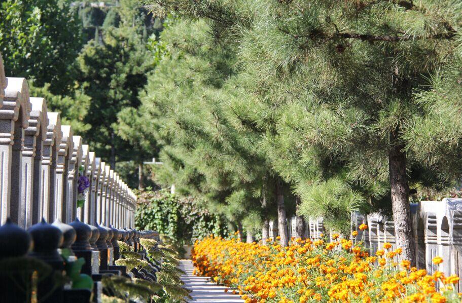 <a href='http://www.gongmutang.com/cemetery/lingshanbaotalingyuan/' >灵山宝塔陵园</a>绝色美景大片